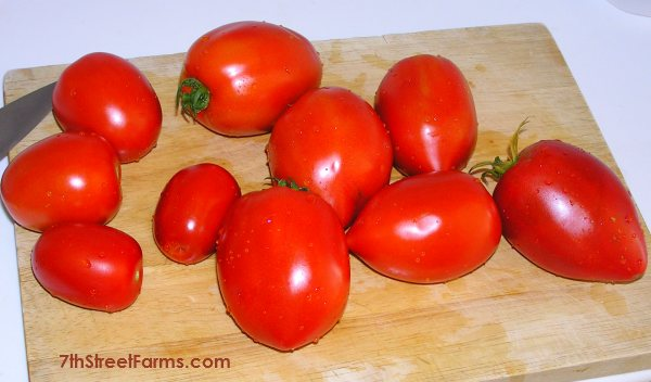 First toms July 2013 100ppi600x352